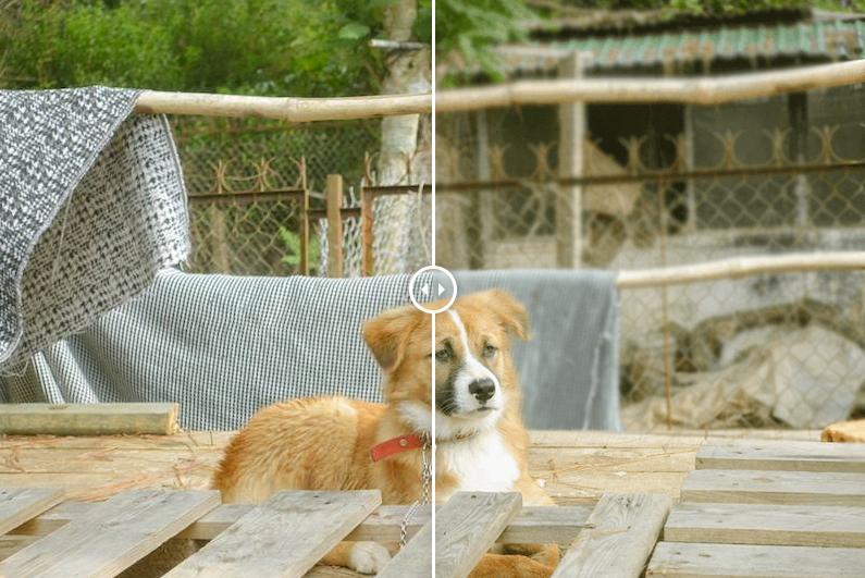 Hình ảnh trước và sau khi sử dụng các công cụ trong Healing Brush